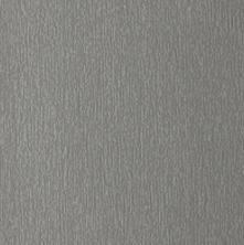 1293002-195 Quartz Platinum