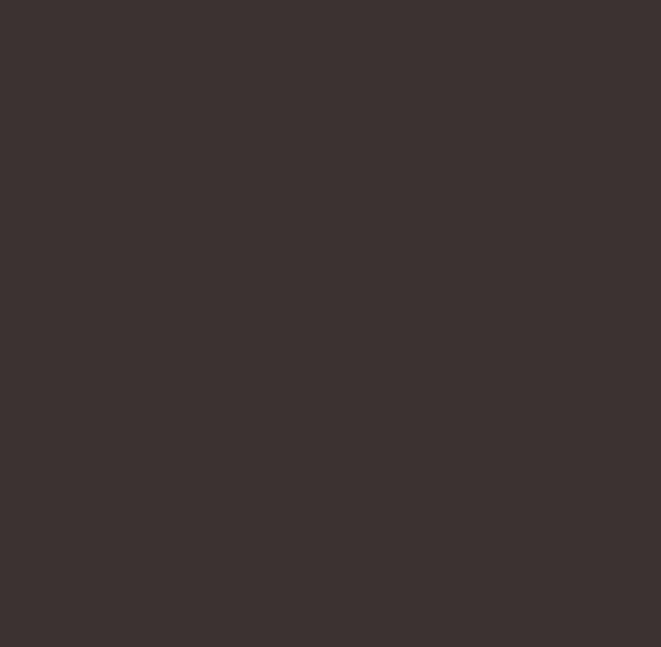 RAL 8019 tmavo hneda